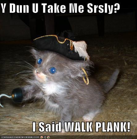 Funny Cat Com