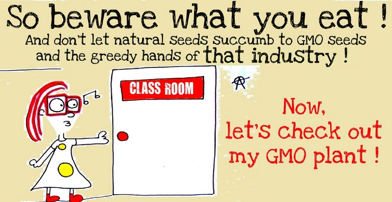 monsanto gmo s Why is monsanto the most hated company  which stands for genetically modified organisms, since it's as  a pro-gmo nonprofit supported in part by monsanto's.