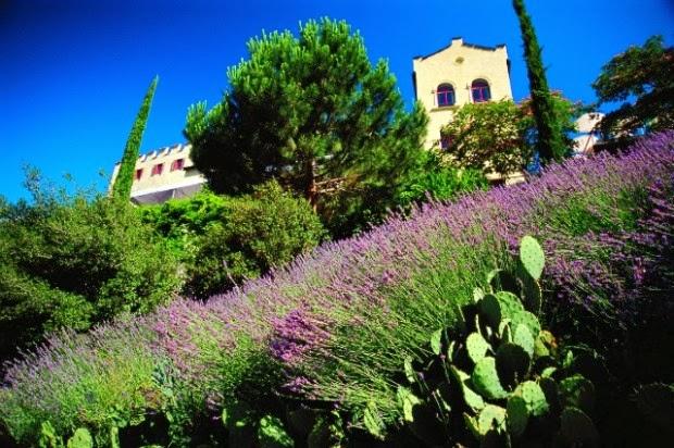 Il giardino delle naiadi sulle orme di sissi - Alberi nani da giardino ...