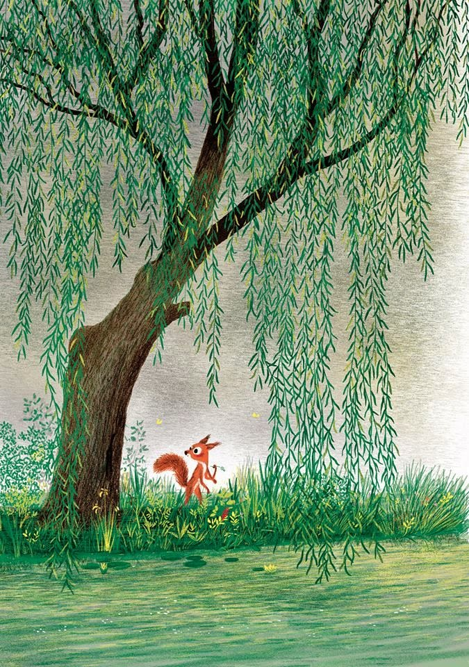 a red squirrel by a lake illustration by French illustrator Marc Boutavent