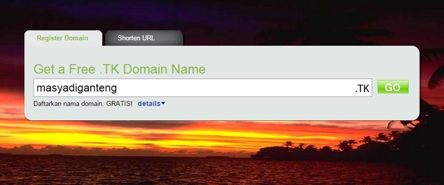 Cara Anyar Setting Domain dari Blogspot ke Dot tk Tampilan 2014
