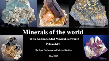 Minerals of the world M. Webber - bajar pdf gratis