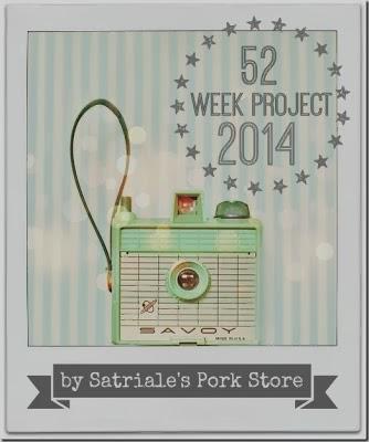 52 WEEK PROJECT 2014