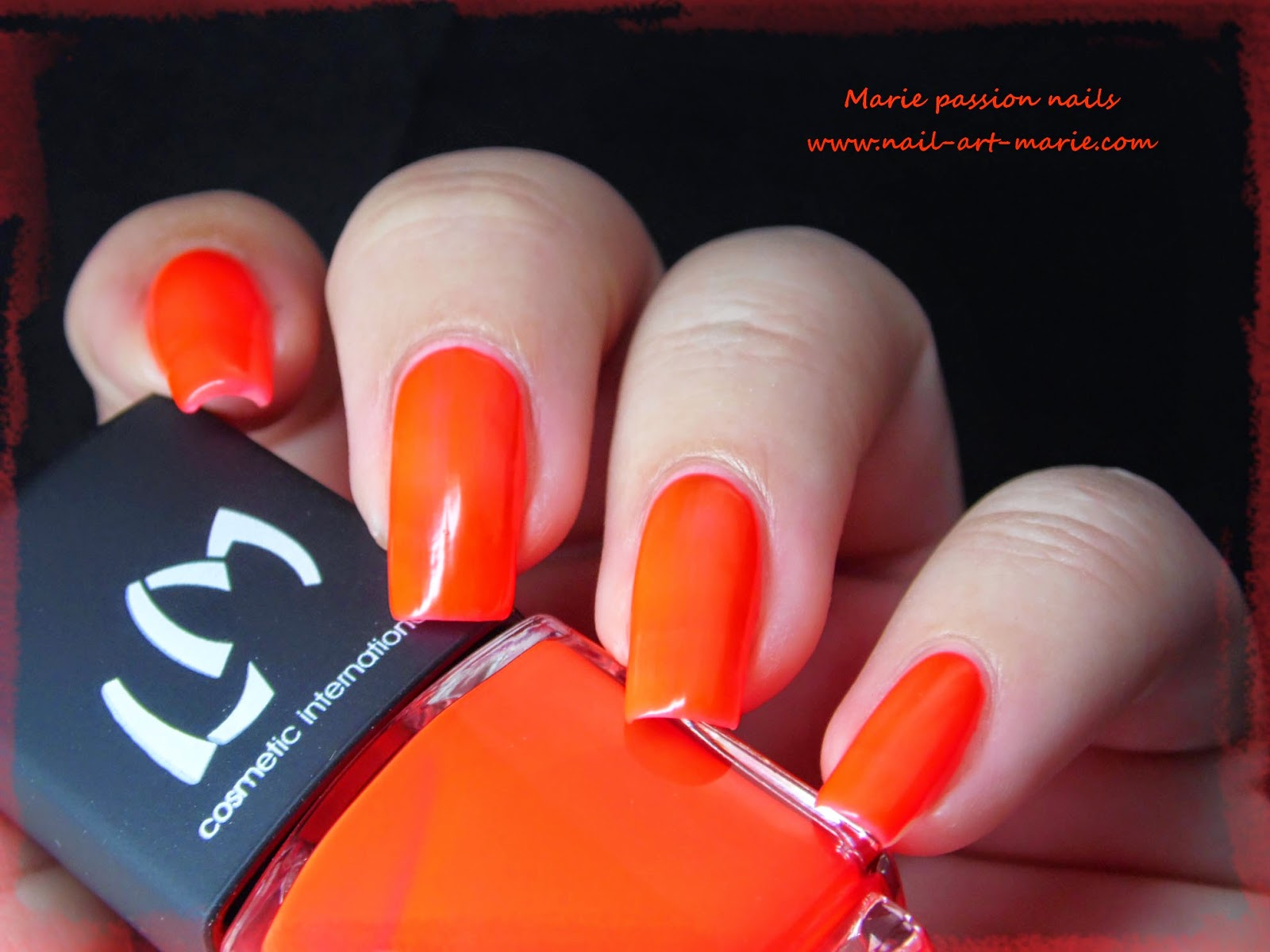 LM Cosmetic San Fransisco8