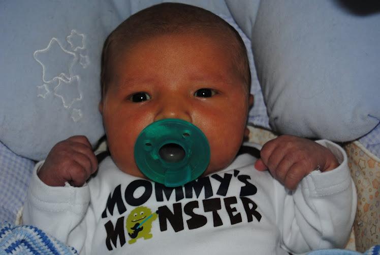 Carter Steven