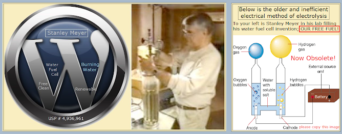 Stanley Allen Meyer Patents Water   Fuel Cell Free Clean Recyclable Renewable hho h2o distilled water fuel