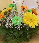 truco centro floral