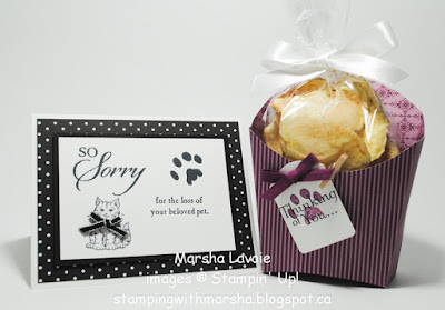 so sorry stampin up fry box