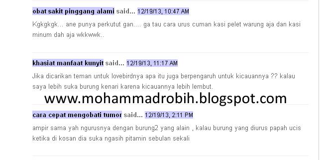 Contoh blog dofollow