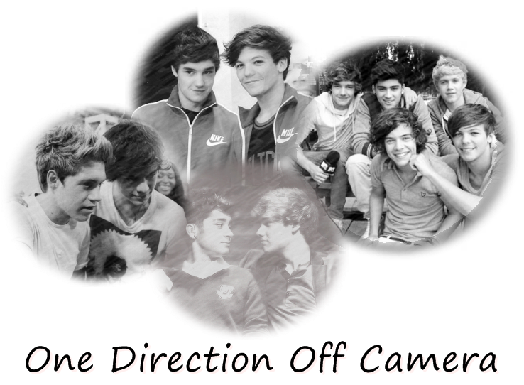 One Direction Off Camera