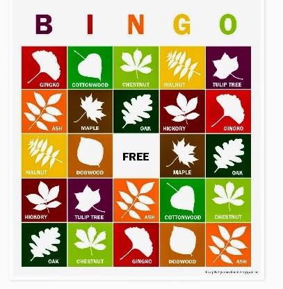 http://deceptivelyeducational.blogspot.com/2014/09/fall-leaves-bingo.html?spref=pi
