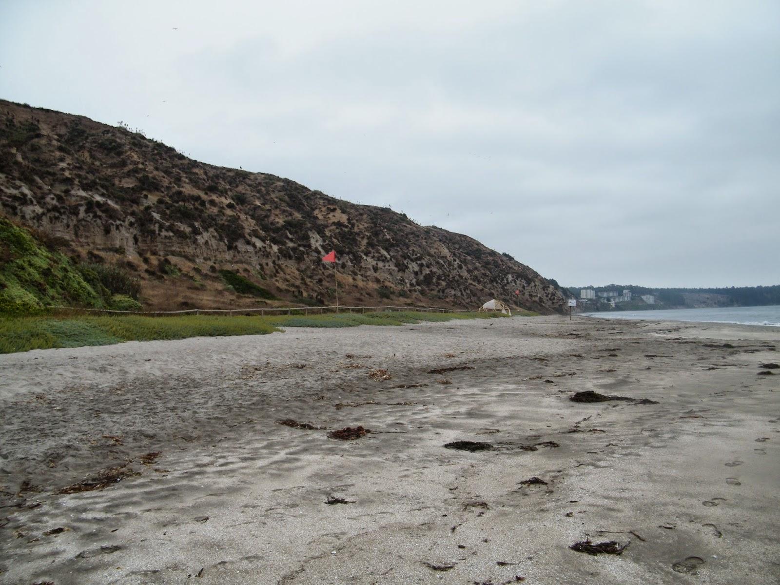 Tu primera vez en una playa nudista Punta Serena