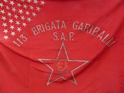 113°Brigata Garibaldi.