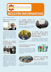 Boletín de la CIE enero 2019