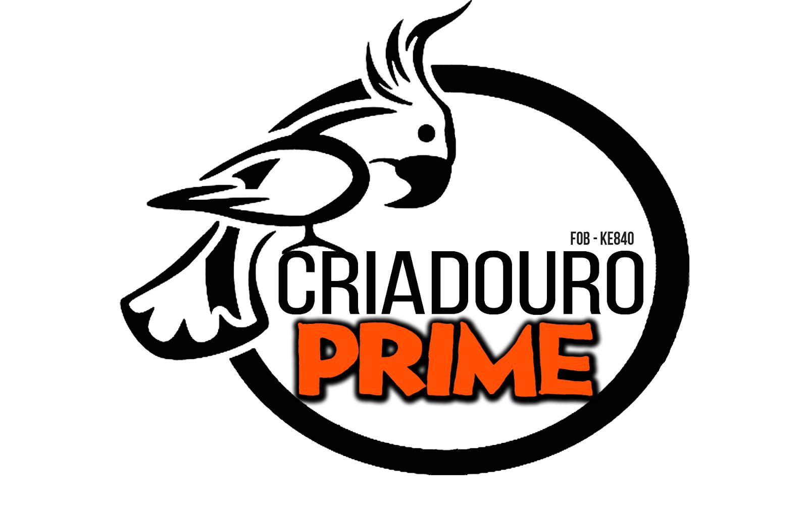 Criadouro Prime