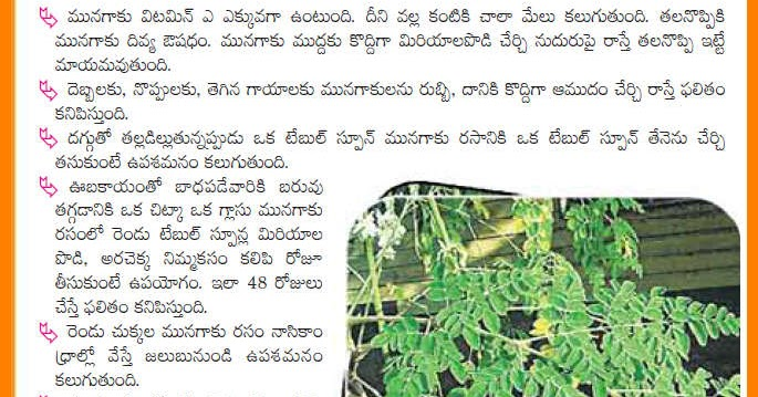 Snap Menthulu And Its Uses Telugu Web World Photos On Pinterest