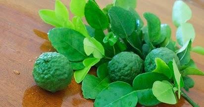 manfaat buah jeruk purut,jeruk purut untuk wajah,kesehatan,untuk ,khasiat daun jeruk purut,kandungan daun jeruk purut,