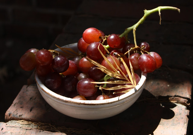 grapes, photograph, plant, brick, wall, S. Myers, Sarah Myers, food, fruit, kitchen, decor, red, white, bowl, Amy Myers, Rustic Collection, ceramic, stoneware, art, middle ages, arte