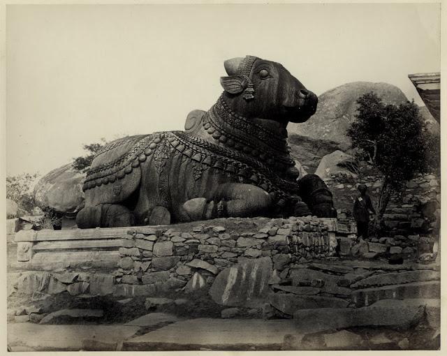 Stone Bull Sculpture at Chamundi Hill Mysore Karnataka - 1880's