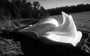 :: BÍBLIA ONLINE ::