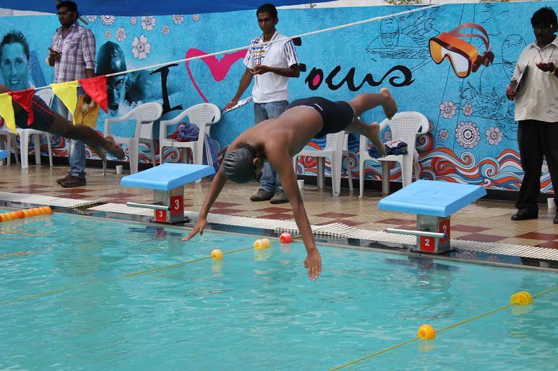 cbse south zone swimming meet 2013