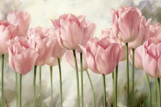paisaje de tulipanes rosa