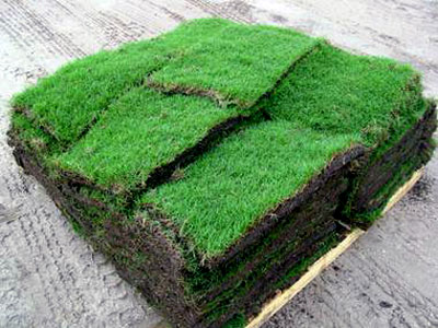 home depot sod grass prices. Black Bedroom Furniture Sets. Home Design Ideas