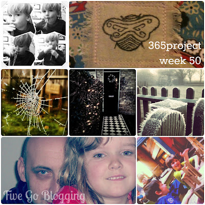 Five Go Blogging 365project week 50