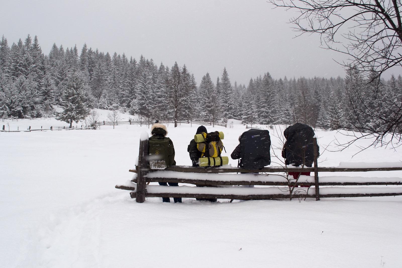 Первый опыт зимнего похода или как мы не встретили Новый год в Карпатах