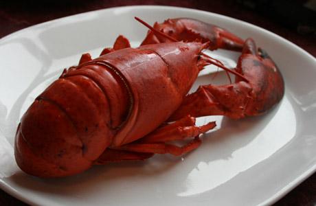 Halls Harbour Lobster Pound, Nova Scotia, Nueva Escocia, Canada