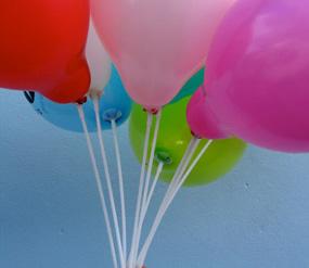 dandelion design: balloon sticks