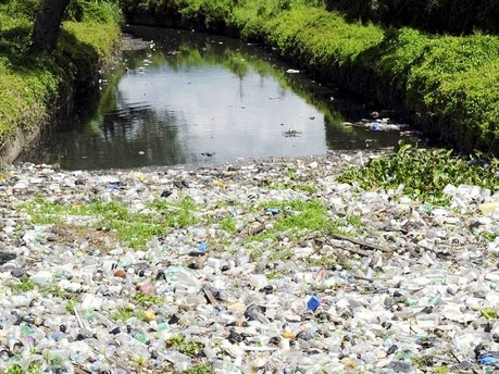negative effects of improper garbage disposal in jamaica Discover how seven simple water pollution solutions that individuals, companies, and communities can take to have a significant and responsible impact on.