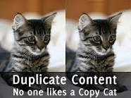 duplikasi Konten