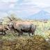 Ανακαλύφθηκαν παράξενα προϊστορικά ζώα που έκαναν ομαδικά την ανάγκη τους