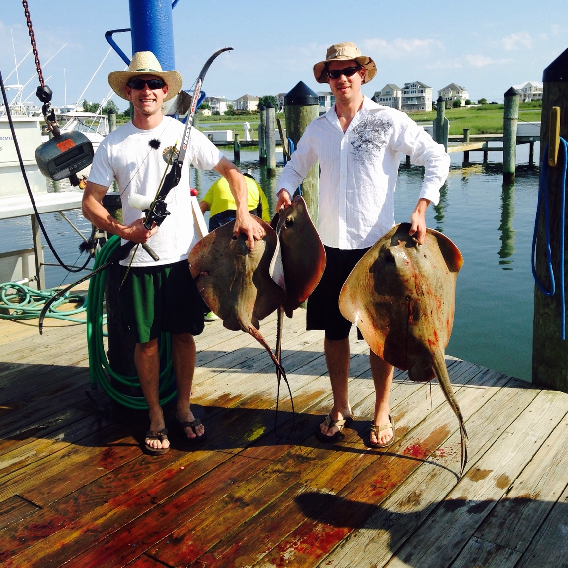July 25 2015 daily reports news ocean city fishing center for Ocean city fishing center