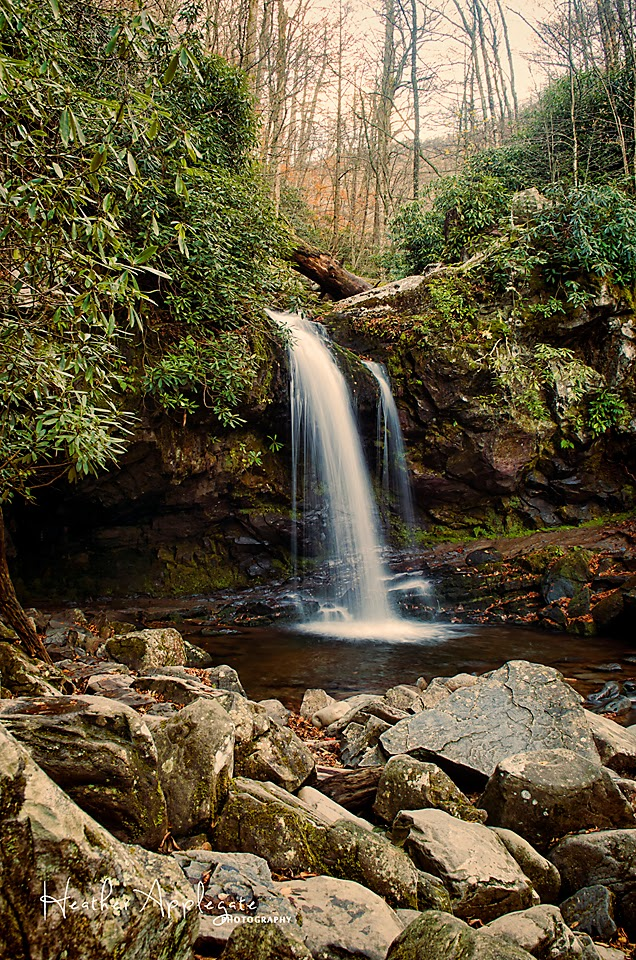 Grotto Falls Smoky Mountains by Heather Applegate