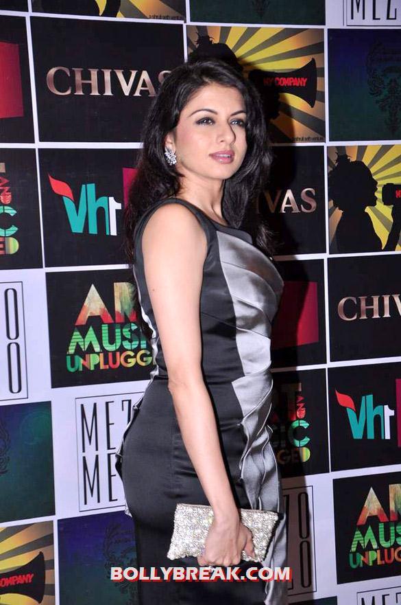 , Bollywood Celebs At Chivas Art & Music Unplugged