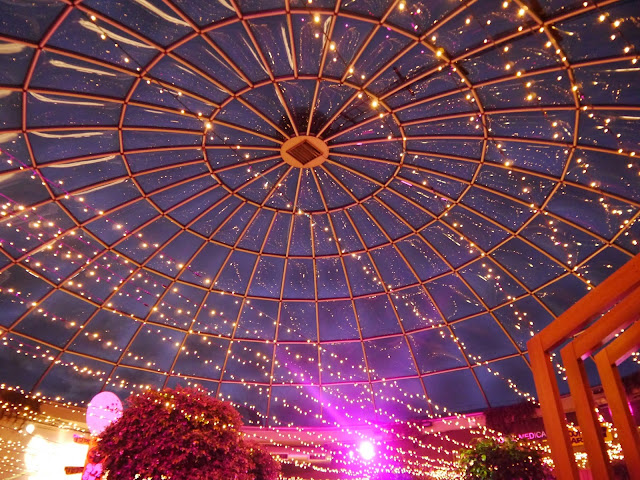 Pleasance Dome lights