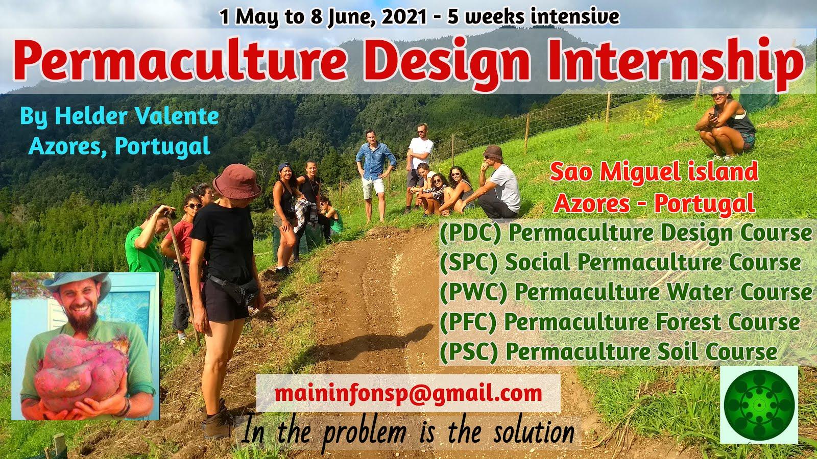 5 weeks permaculture internship