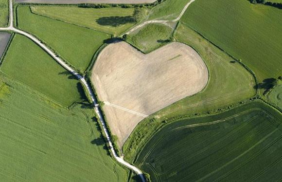 Srce kao prirodno čudo  Tumblr_kxqspjy76e1qz4kblo1_1280