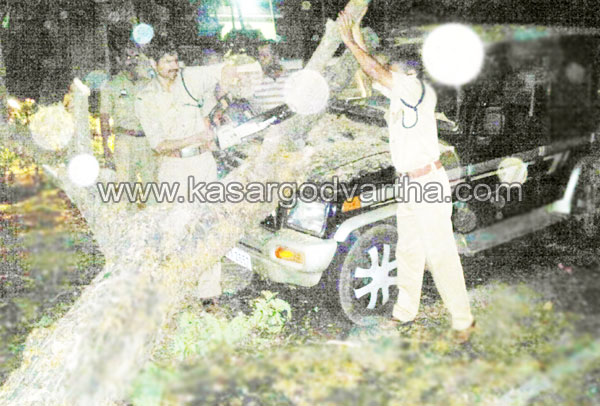 Adkathbail, kasaragod, Kerala, Accident, Jeep, Injured, National highway, street, Malayalam news, Kerala News, International News, National News, Gulf News, Health News, Educational News, Business News, Stock news, Gold News, Kollur, Fireforce, Kollam