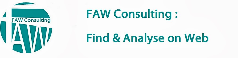 FAW Consulting - WIS (Web Information Specialist)