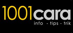 1001cara.com