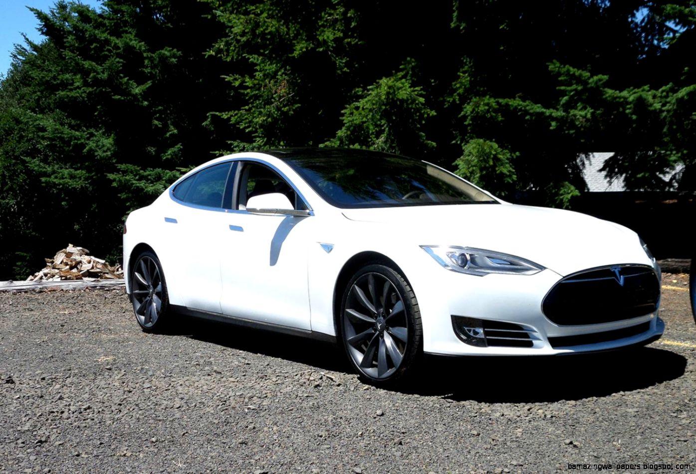Tesla Cheap Car Model