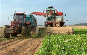 Πληρωμές τευτλοκαλλιεργητών από την Ελληνική Βιομηχανία Ζάχαρης