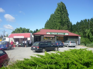 Shop on State Highway 87