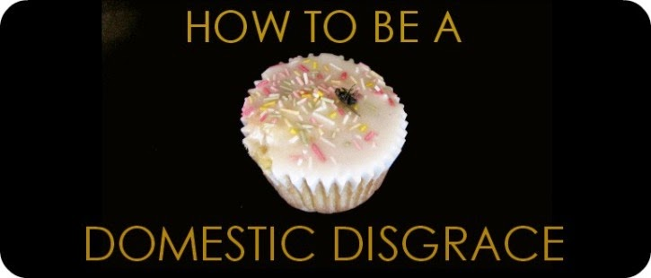 HOW TO BE A DOMESTIC DISGRACE