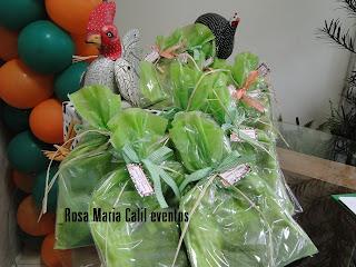 festa infantil, móveis rísticos, balões verde laranja, sacolas brindes, bichos pelúcia
