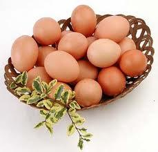 http://3.bp.blogspot.com/-wNlp4ZNWUjU/T_cjjHfWWTI/AAAAAAAAIgo/yQP0T877onc/s400/huevos-proteinas-adelgazar-musculacion-calorias-carbohidratos-musculacion-gym.jpg