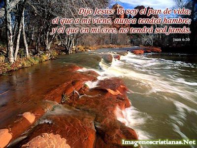 http://3.bp.blogspot.com/-wNlwXAGFezA/TvyKlO9dMjI/AAAAAAAAA-I/MXFp1Mfn8kA/s1600/Jesus+dijo+Yo+Soy+el+Pan+de+Vida..png